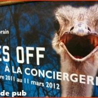 Bêtes off : la ferme des animaux s'installe à Paris