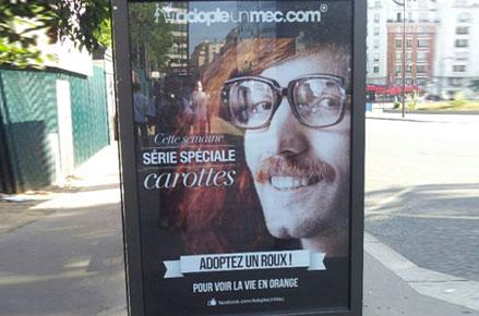 Affiche Adopte Un Mec série limitée carottes